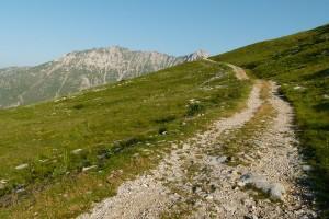Sentiero-dei-Fiori-P1110543